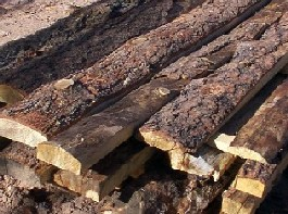 Rustic log siding with bark made by greenleaf forestry
